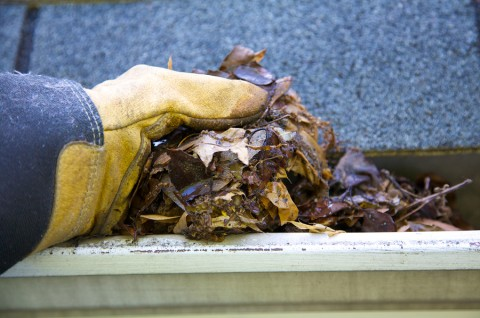 bigstock-Fall-Cleanup--Leaves-In-Gutte-3878329