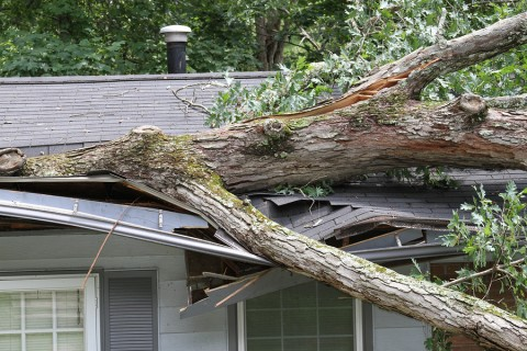 Homeowners-Insurance-Storm-Damage